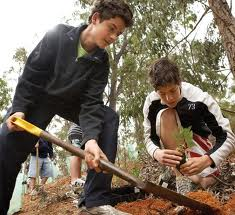 Boys planting trees is a highly active volunteer project