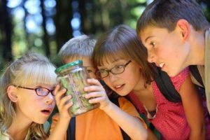 Kids identifying dangerous plants