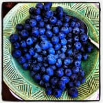 Blueberries are great fuel for meetings