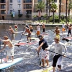 Several people stand up paddle boarding